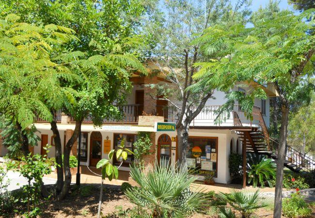 Ferienwohnung in Pedreguer - La Sella apartamentos